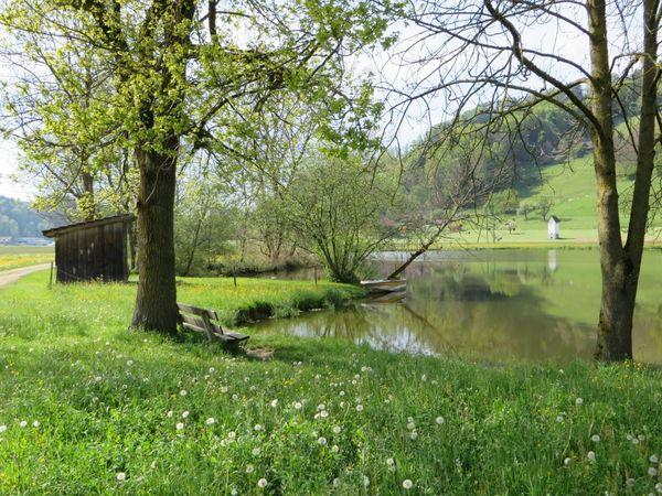 Boucle panoramique sur le Menzberg
