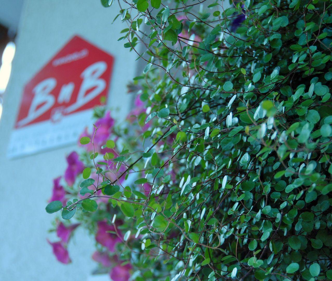BnB von Rickenbach - Steinen
