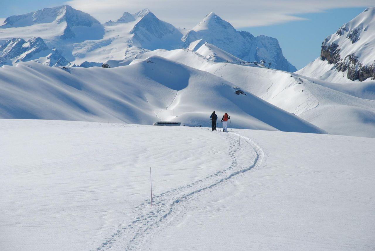 Schneeschuhtour mit Alpenblick