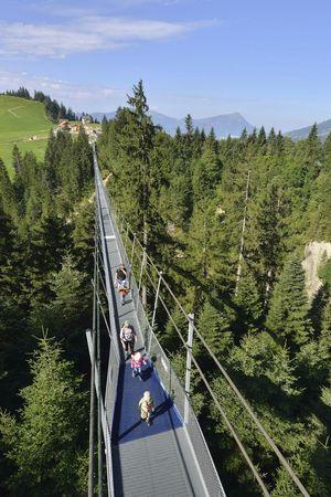 «Skywalk» pedestrian suspension bridge
