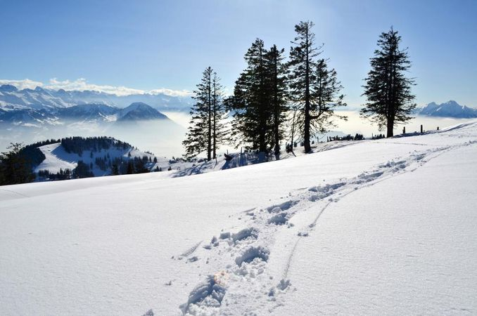The Rigi Schwaendi Trail