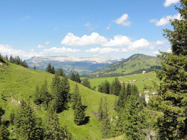 Bärgmandlipfad Giswil - Itinéraire de randonnée SuisseMobile n° 576