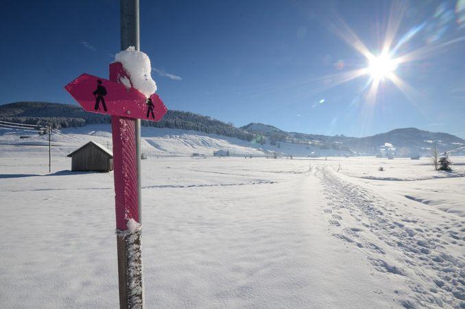 Rothenthurm – das grösste Hochmoor der Schweiz