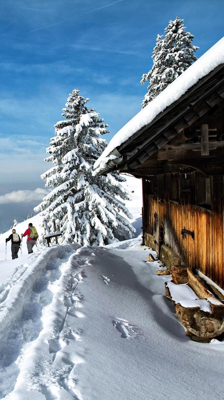 Winter & ski