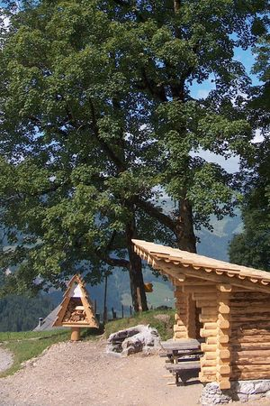 Campfire sites