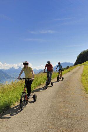 Bikeboard Emmetten-Stockhütte