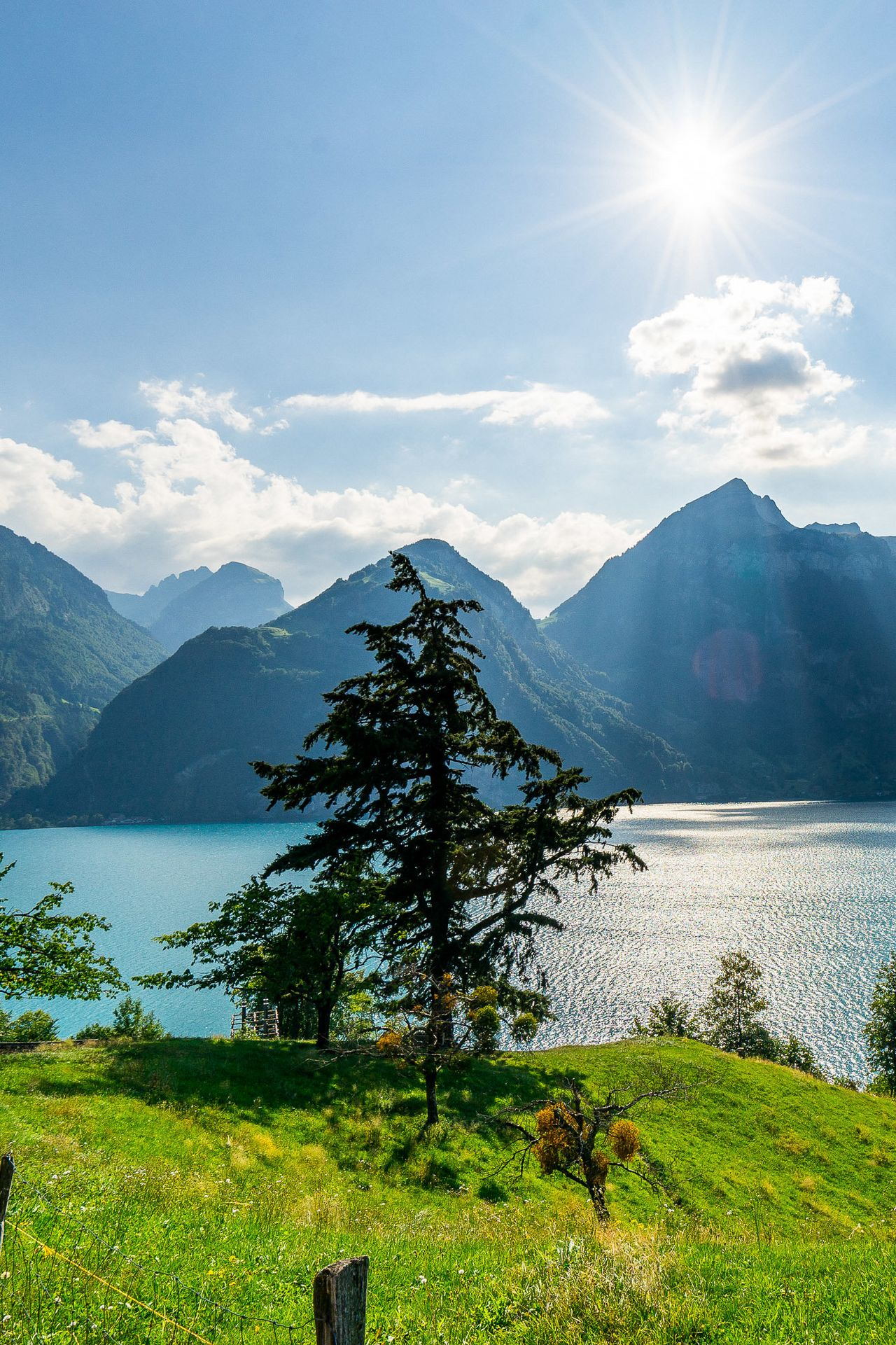 Histoire de La Voie Suisse
