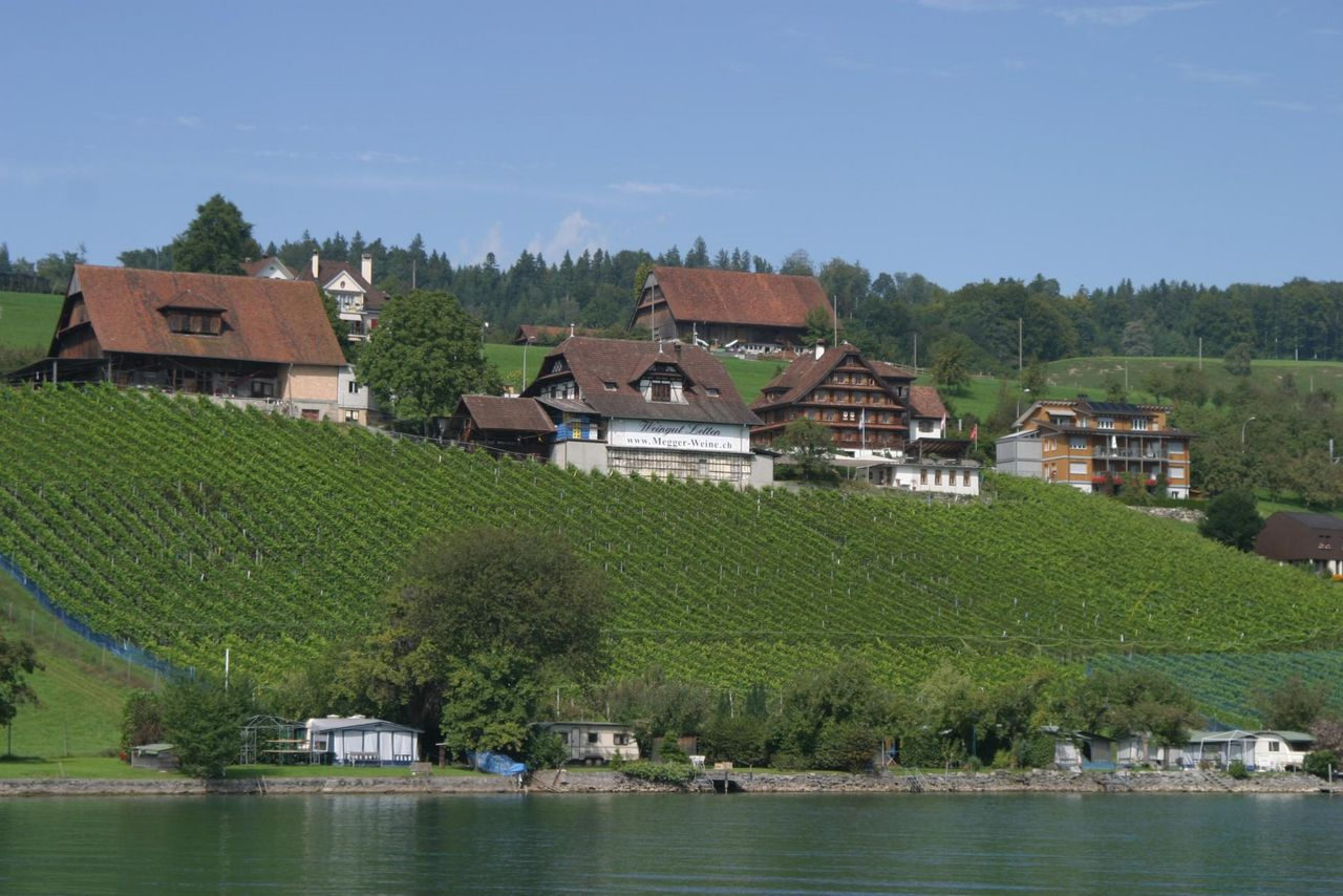 Letten wine estate in Meggen