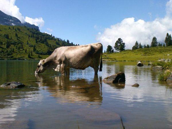 Lake Engstlen