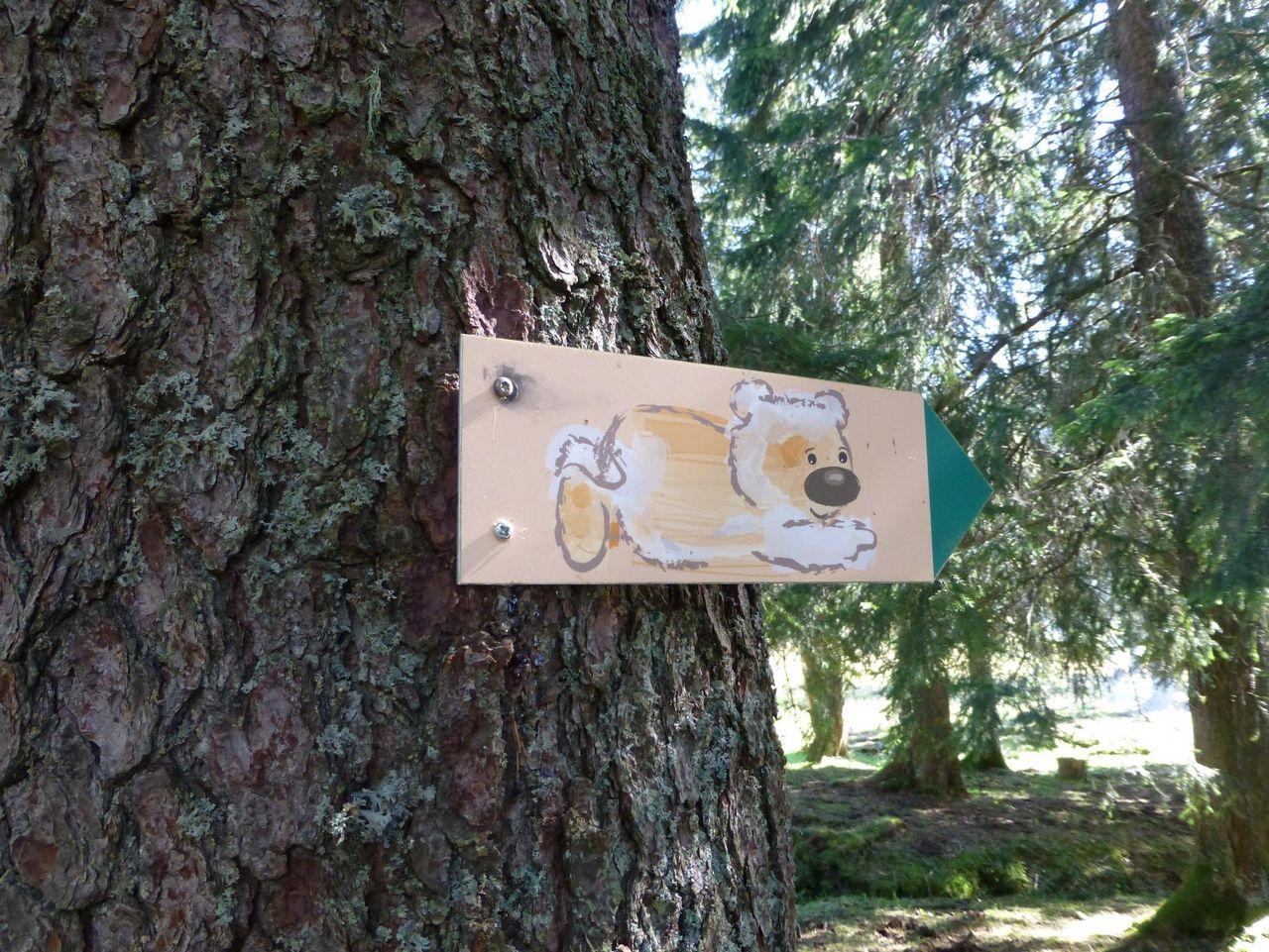 Sentier Moorbärenpfad