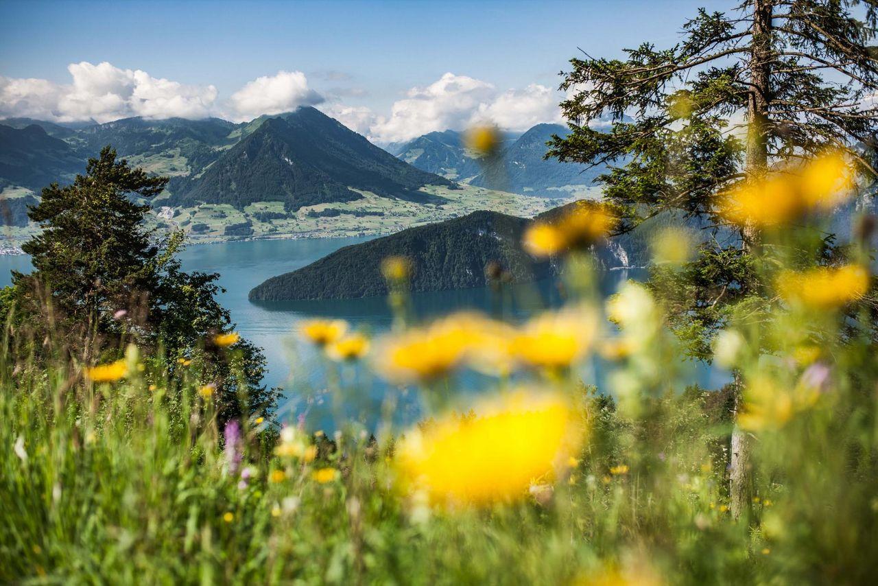 Montagne - Vallée - Lac