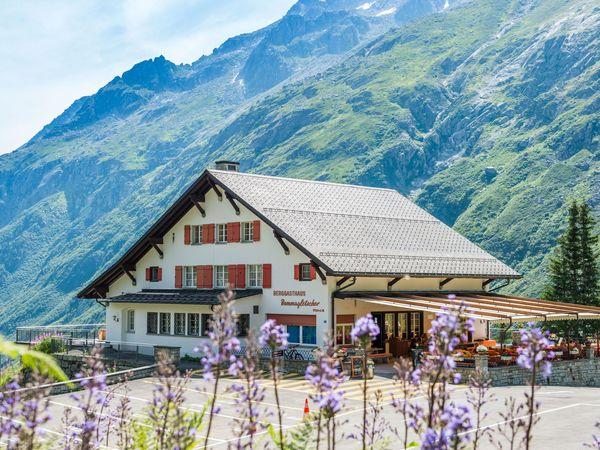 Berggasthaus Dammagletscher