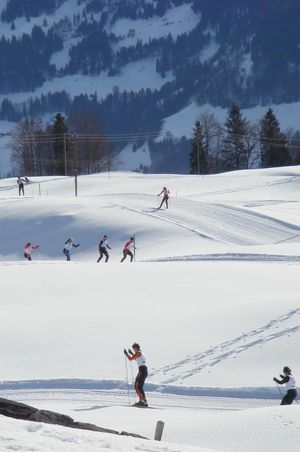 Langlauf–Loipe Oberberg
