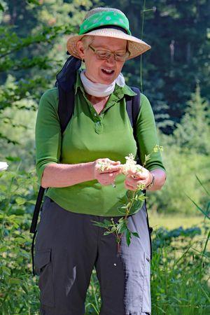 Führung – Kräuterwanderungen und Kurse mit der Heilpflanzenfrau