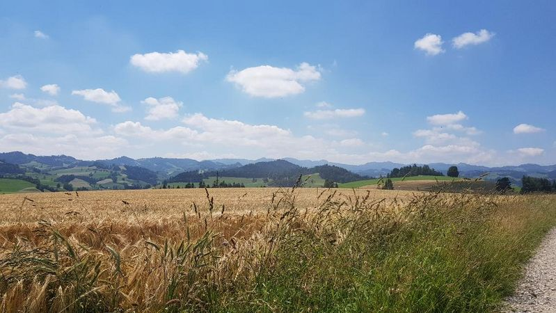 De Willisau à Menzberg