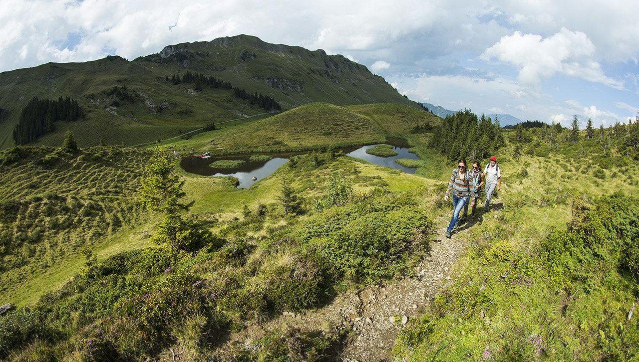 Buiräbähnli-Safari Engelberg