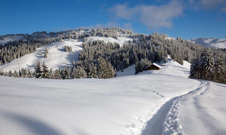 Illgau - St. Karl-Ibergeregg-Rundweg