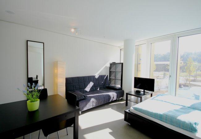LU Drachenmoor III - Allmend HITrental Apartment