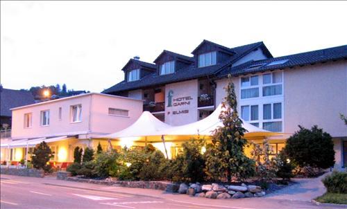 Hotel Felmis