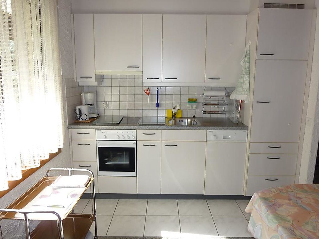 Holiday apartment Birkenstrasse 70/1
