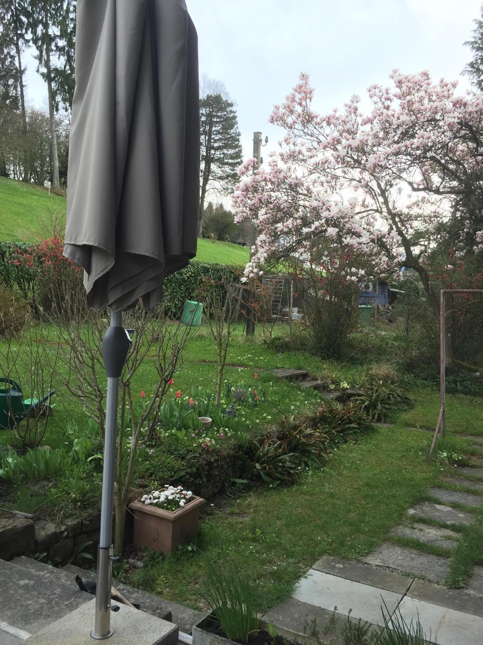 Small, beautiful Garden-apartment near Lucerne
