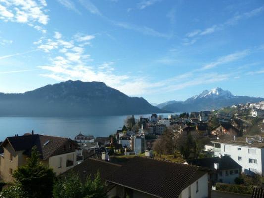 Hoegerli Alpenblick