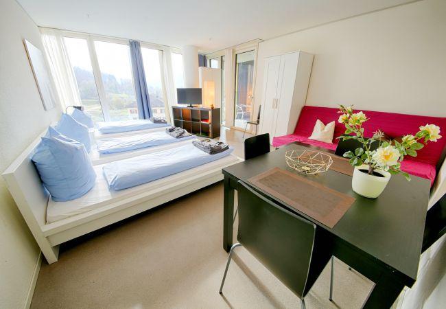 LU Nadelwehr I - Allmend HITrental Apartment