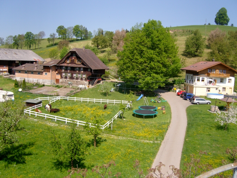 Ferme de vacances Farnere Swiss-Lodge