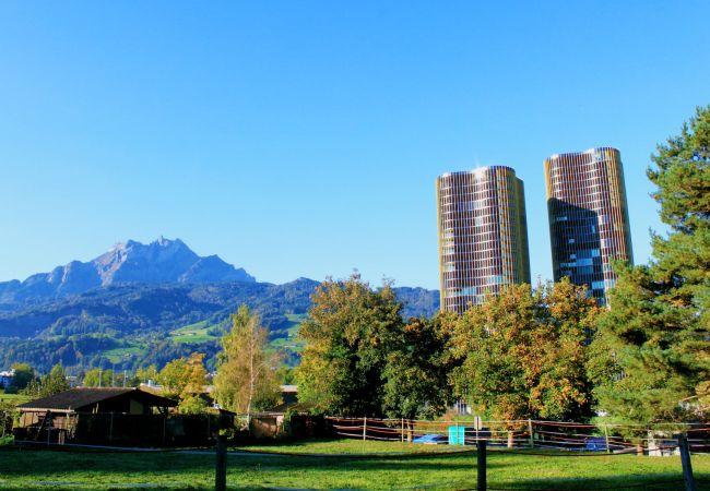 LU Gletschergarten II - Allmend HITrental Apartmen