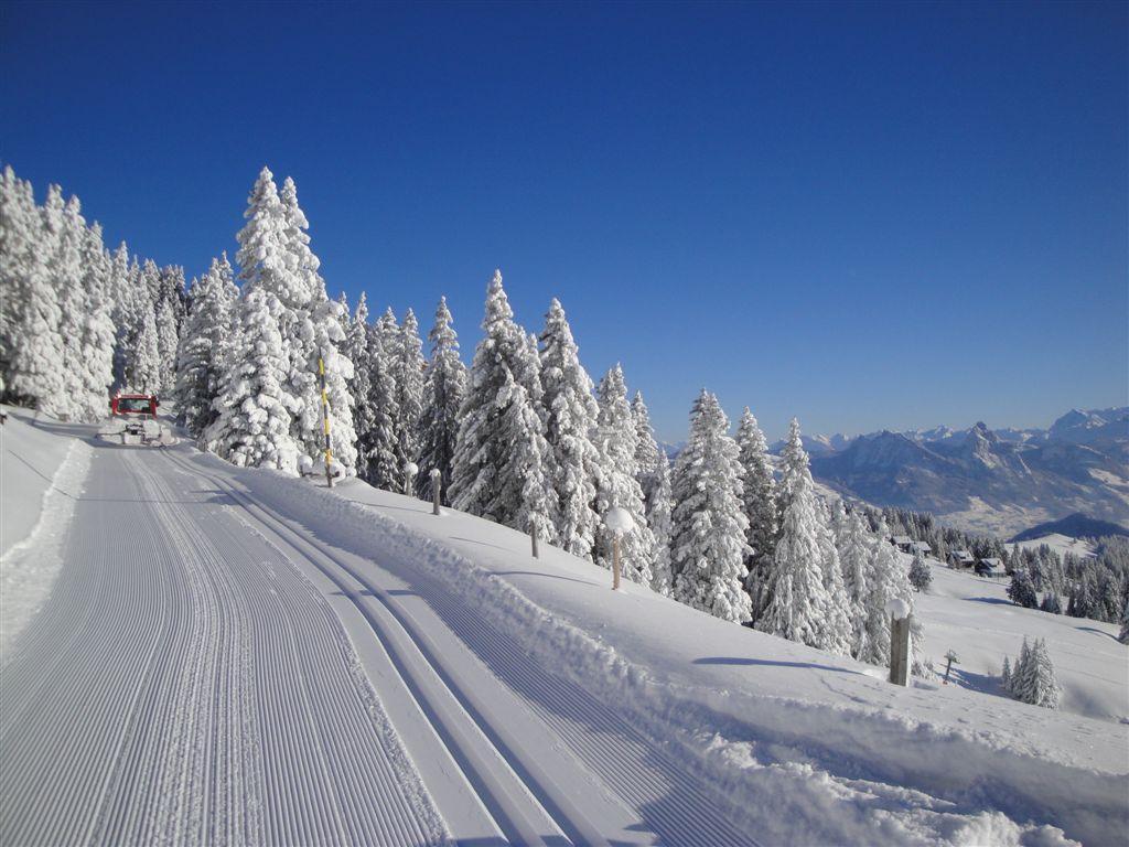 Langlaufloipe Panoramaweg