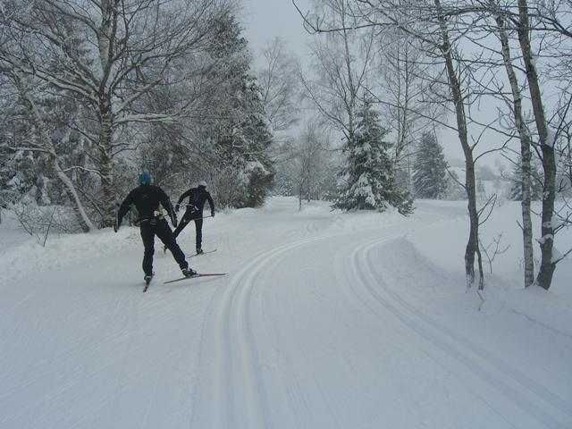 Finnenloipe Rothenthurm 3 km