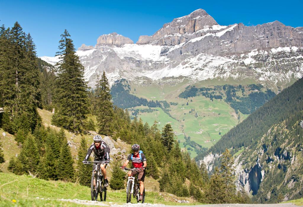 Brunni Valley Bike - 414 SwitzerlandMobility
