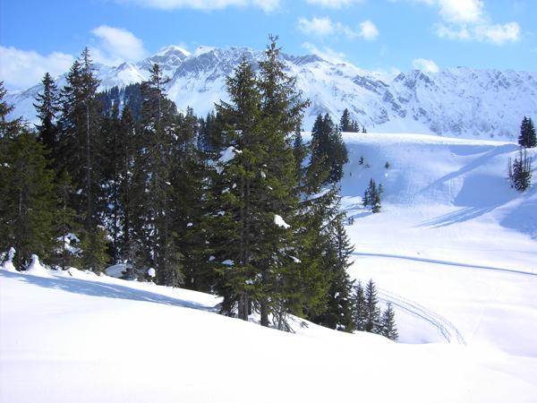 Blattenegg-Salwideli-Trail - Biosphäre Entlebuch