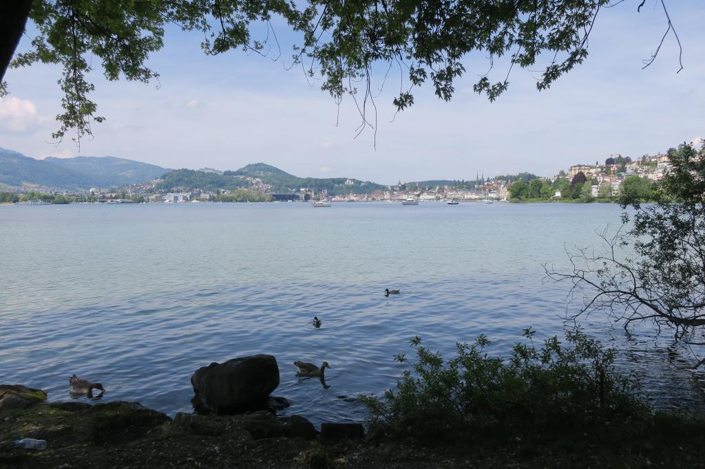 Von Luzern über Rio de Janeiro nach Meggen