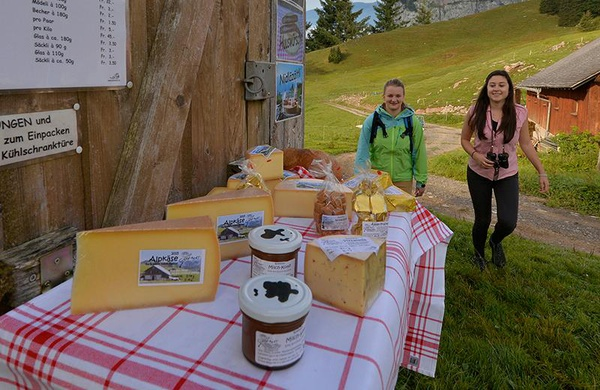 Alpine Cheese Trail Stoos with Alpine Cheese Fun Pass
