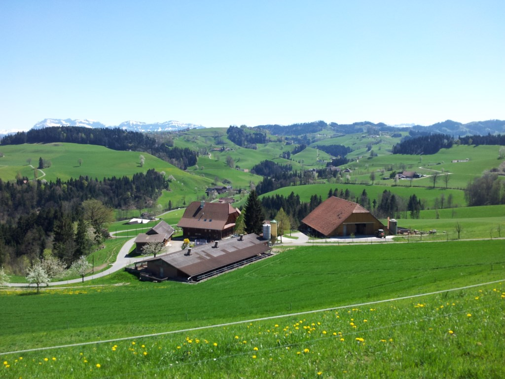 Rundwanderung von Willisau nach Hergiswil