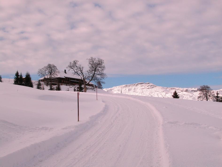 Wanderung zur Skihütte & Alphotel Schwand in Sörenberg