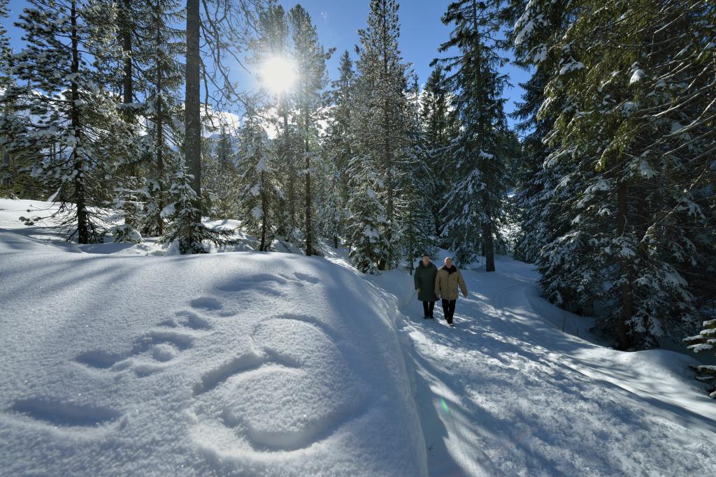 Rossweid - Salwideli - Kemmeriboden - in der UNESCO Biosphäre Entlebuch