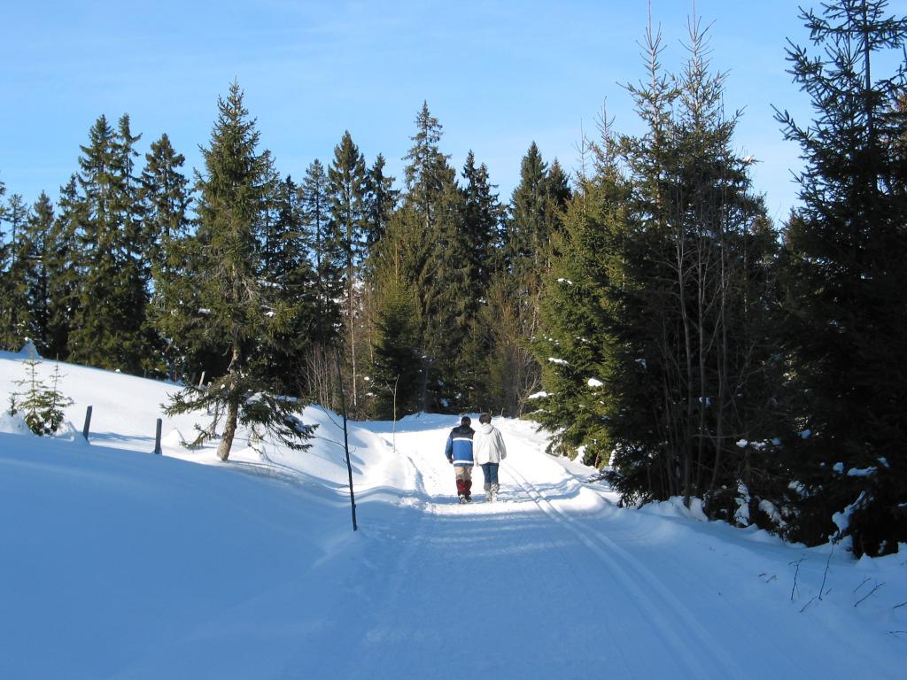 Rundweg Rossweid - Schwarzenegg - Rossweid in Sörenberg