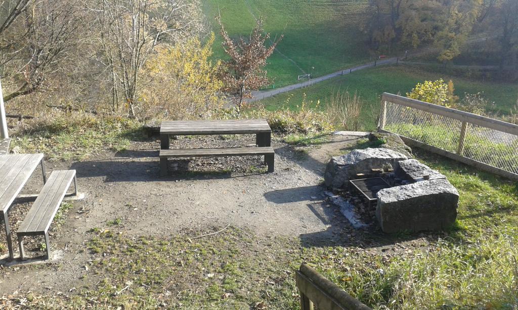 Lenzburg, Schloss Lenzburg