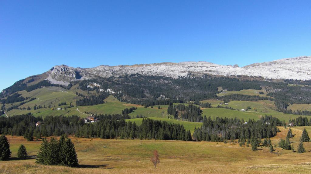 Salwideli - Arniberg - Tannigsbode - Salwideli