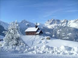 Schneeschuhtrail 885: Haldi