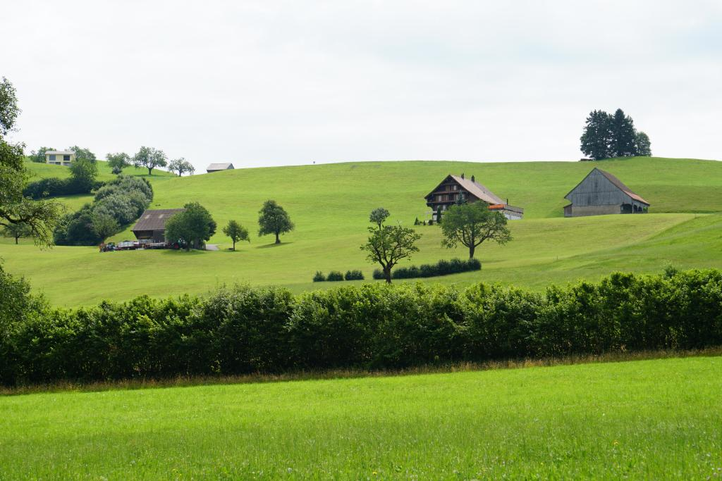 Rundweg Feusisberg - Schindellegi
