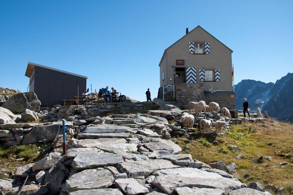 5-Hütten-Panoramaweg: Etappe 1  Göschenen zur Dammahütte SAC