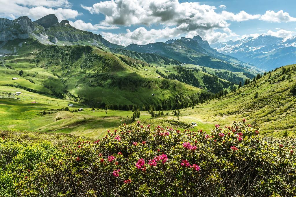 Chemin d'altitude de la vallée du Schächen - Itinéraire SuisseMobile 595