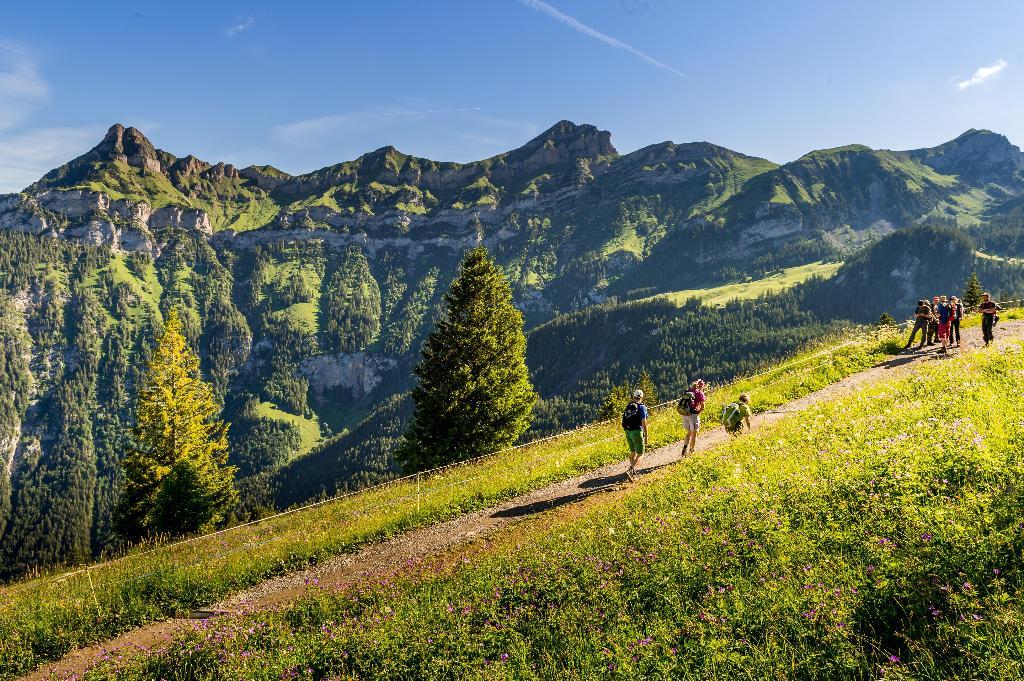 Schächen valley high-level path - SwitzerlandMobility Route 595
