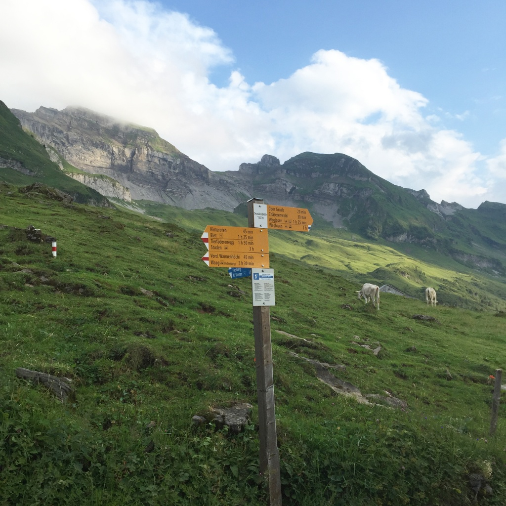Am Fusse des Forst- und Druesberges