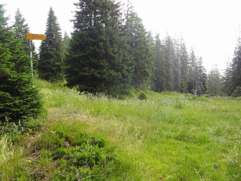 Obwaldner Höhenweg: Etappe 1