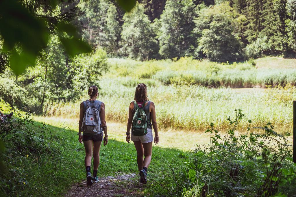 Waldstätterweg Etappe 2: Vitznau - Küssnacht