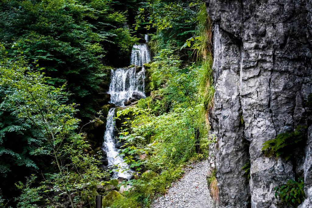 Waldstätterweg: Etape 5 Alpnachstad - Bürgenstock